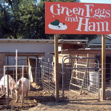 Windsor Family Farm: Home